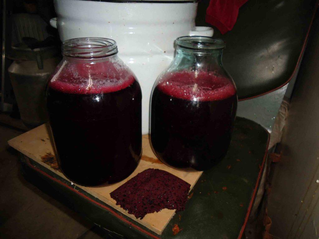 Сливовое вино в домашних условиях простой рецепт 50