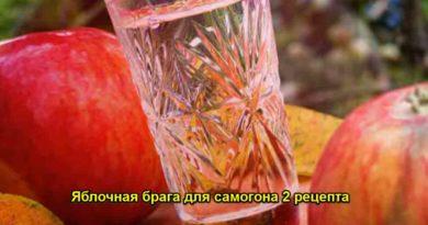 Jablochnaja-braga-dlja-samogona
